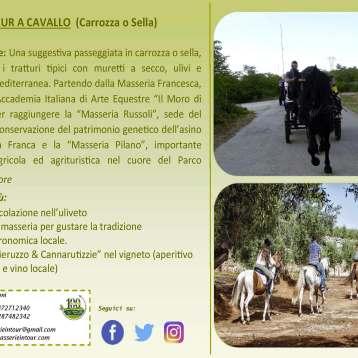 Tour Cavallo & Carrozza 2